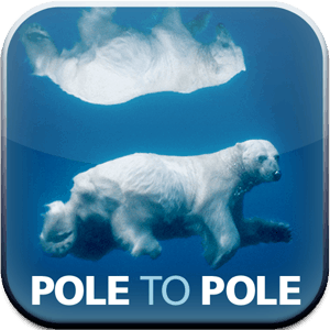 Paul Nicklen's iPad app: Pole to Pole