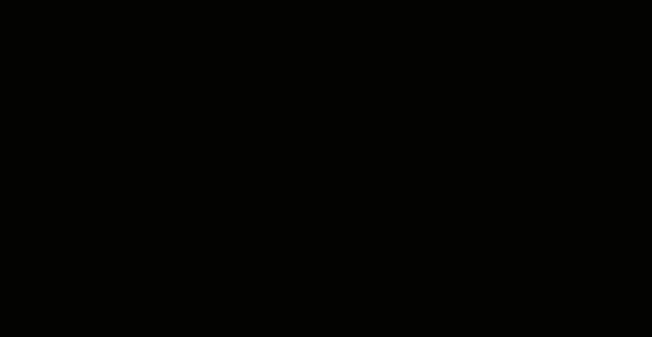 programmaufficiale2016_bwf7_black
